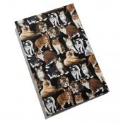 Cats themed photo album binder