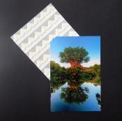 Lineco Self Adhesive Photo Corners